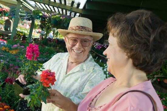gardening in your senior living communities