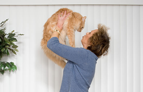 the best kinds of pets for senior